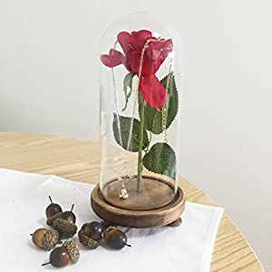sexyrobot Beauty and The Beast Red Rose, Silk Flower with LED Light in a Glass Dome for Home Decor Holiday Party Wedding Anniversary Birthday 37