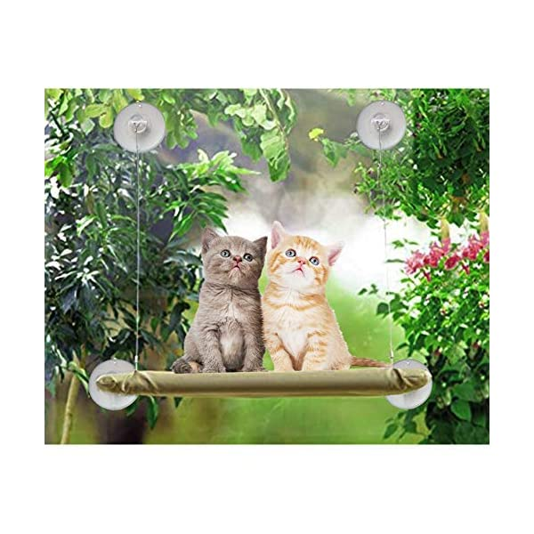 ZALALOVA Window Cat Seat, Cat Window Perch Hammock Space Saving Design w/1Pc Funny Cat Toy 2Pcs Extra Suction Cup Window Seat Cat Shelves All Around 360° Sunbath Holds Up to 50lbs for Any Cat Size 2