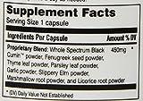 Amazing Herbs Black Seed Fenuzume Bronc-Care, 60