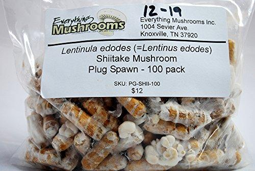 Wooden Plugs grow Shiitake mushrooms product image