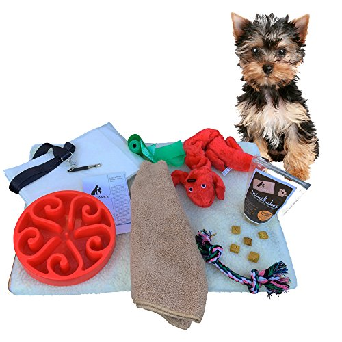 9 Piece Puppy Gift Set with Slow Bowl Training Pads Toys Treats and More  sc 1 st  Gift Baskets & New Puppy Gift Baskets | Shop New Puppy Gift Baskets Online