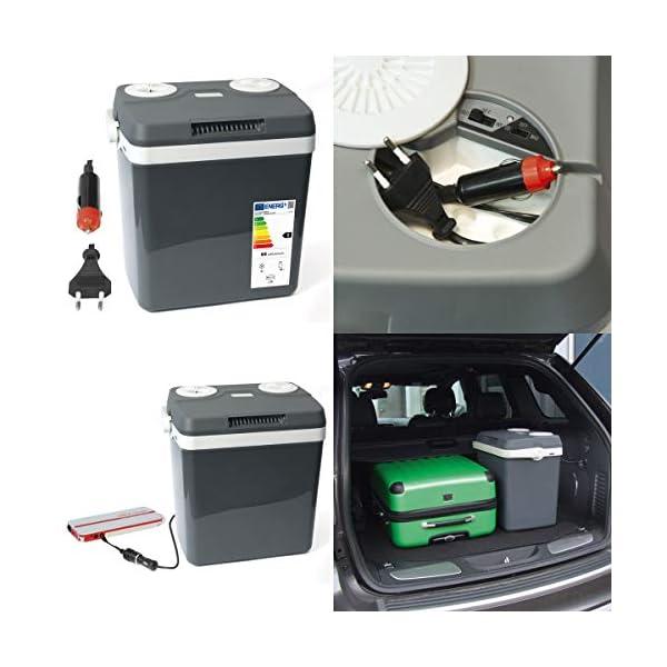 51Lpbgyb8vL Dino KRAFTPAKET 13100Elektrische Kühlbox Thermoelektrische Thermobox