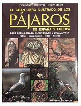 El gran libro ilustrado de los pajaros de España y Europa: Amazon.es: Brichetti, Pierandrea, Dicapi,: Libros
