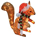 Celebrations 50370-71 Led Squirrel Yard Art, Clear, 20''