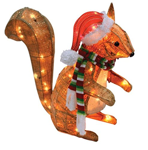 Celebrations 50370-71 Led Squirrel Yard Art, Clear, 20'' by Celebrations