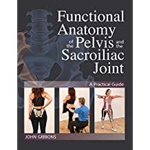 Functional Anatomy of the Pelvis and the Sacroiliac Joint: A Practical Guide