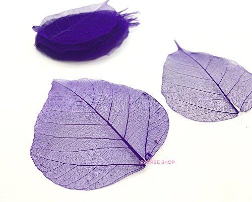 100 Pcs. Purple Skeleton Natural Ficus Religiosa Leaves Artificial Leaves Craft Card Scrapbook Diy Handmade Embellishment Decoration Art, Mulberry Paper Leaves, By RATREE (Purple Skeleton)