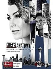 Grey's Anatomy: Season 14 (DVD)