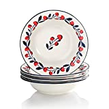 Cherries Series Living Ware 9-inch Rim Soup Bowls/Plates Oven Safe, Lead-free Stoneware Set of 4 by Sweejar