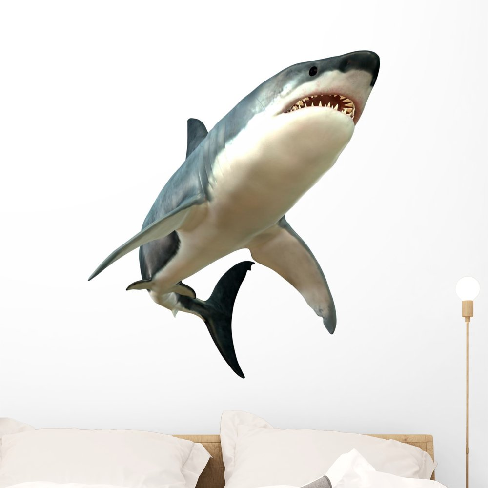 Wallmonkeys Great White Shark Wall Decal Peel and Stick Animal Graphics (36 in H x 36 in W) WM289167