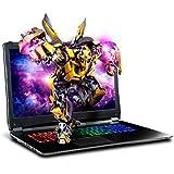 "SAGER NP8375 17.3"" FHD 144Hz G-Sync Gaming Laptop, Intel Core i7-8750H, NVIDIA GTX 1070 8GB DDR5, 16GB RAM, 500GB NVMe SSD + 1TB HDD, Windows 10 Home"