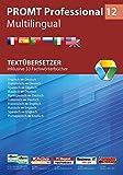 PROMT Professional 12 Multilingual: Textübersetzer - Inklusive 33 Fachwörterbücher