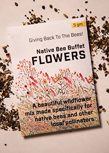 (Flower Seeds for Planting 4gm - Wildflower Seeds, Bee Garden Seeds (For Native Bees))