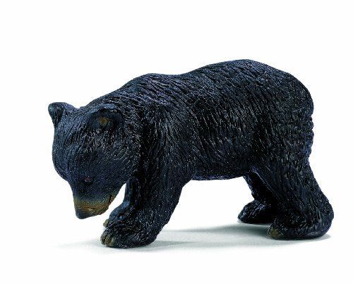north america bear - 6