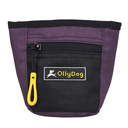 OllyDog Goodie Dog Treat Bag with Belt Clip, Dahlia, One Size ()