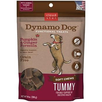 Cloud Star Dynamo Dog Tummy Digestion Support Soft Chew Treats - Pumpkin & Ginger - Grain Free - 14 Oz