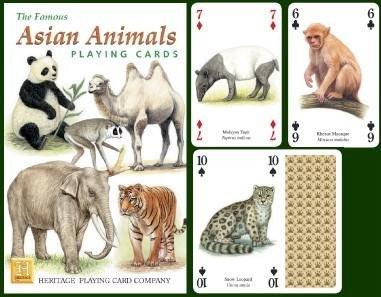 asian card game casino - 7