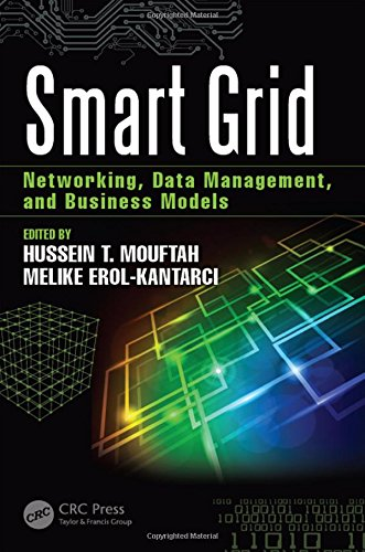 Smart Grid: Networking, Data Management, and Business Models (100 Cases)