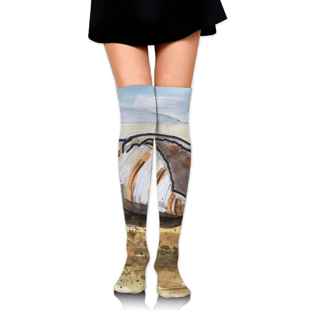 High Elasticity Girl Cotton Knee High Socks Uniform Shell Painting Women Tube Socks