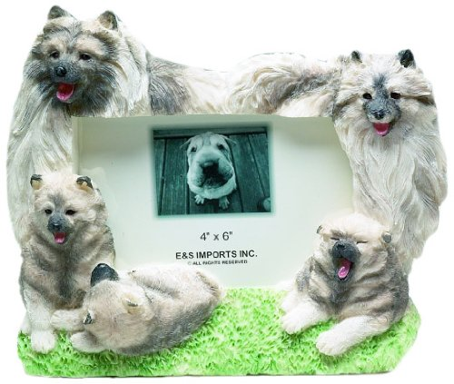 Keeshond Picture Frame Holds Your Favorite 4 x6 Inch Photo,  A Hand Painted Realistic Looking Keeshond Family Surrounding  Your Photo. This Beautifully Crafted Frame is A Unique Accent To Any Home or Office. The Keeshond Picture Frame Is The Perfect Gift For Keeshond Owners And Lovers!