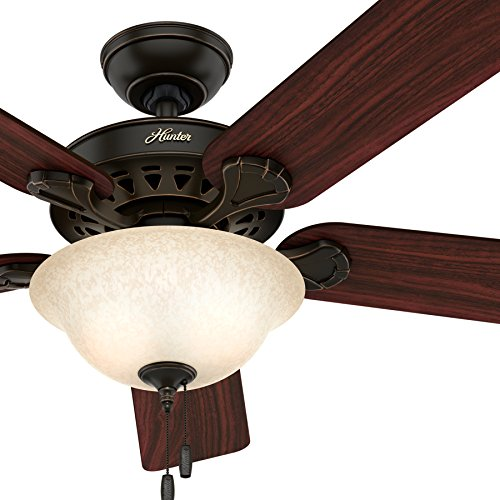 Hunter 52-inch Onyx Bengal Finish Ceiling Fan with Texture Tea Glass Light Kit (Certified ()