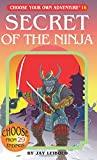 Secret of the Ninja (Choose Your Own Adventure (Paperback))