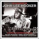 The Very Best of John Lee Hooker - John Lee Hooker