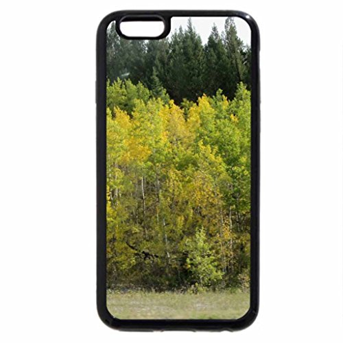 iPhone 6S / iPhone 6 Case (Black) Autumn trees while driving