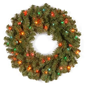 National Tree 24 Inch Kincaid Spruce Wreath with 50 Multicolor Lights (KCDR-24WRLO-1) 97