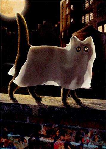 Pretty Cat Ghost Avanti Funny Halloween Card -