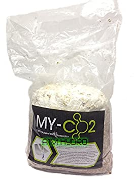 My Co2 Natural Production Generator Twice The Mass Of Exhale Bag Hydroponics