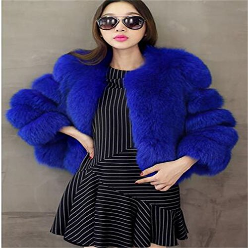 Lisa+Colly+Women+FAUX+Fur+Coat+Vest+Women+Clothes+Luxurious+Faux+Fur+Jacket+Coat+Parkas+Outwear+%28L%2C+Blue%29