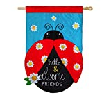 Evergreen Hello and Welcome Friends Applique House Flag, 28 x 44 inches For Sale