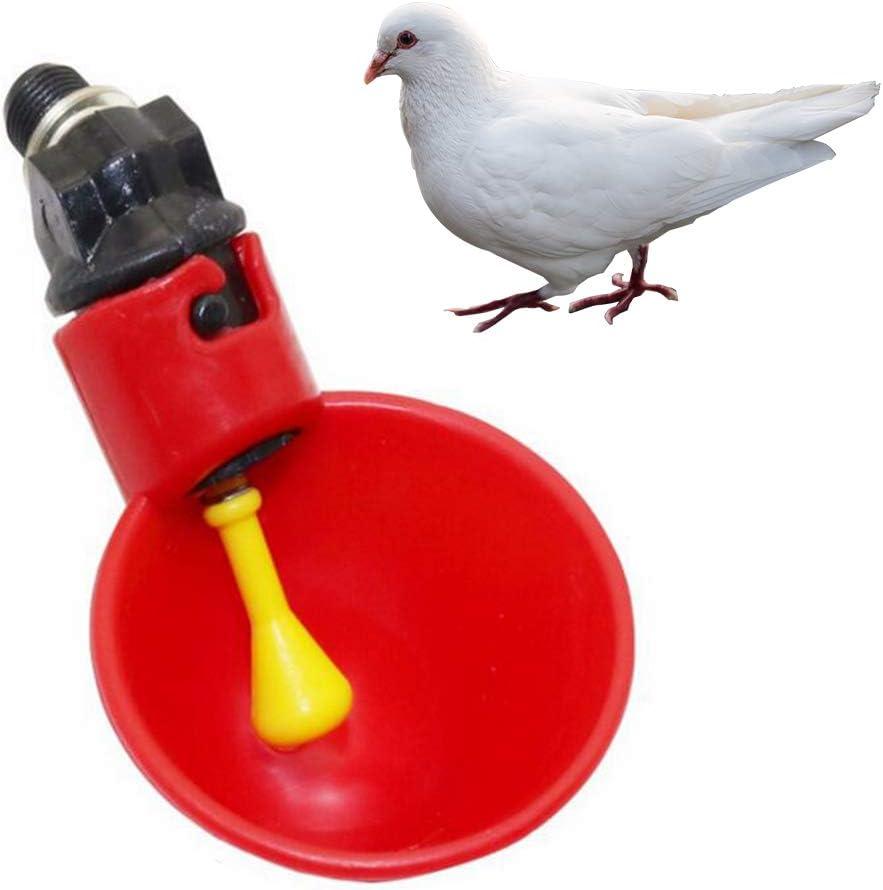 Wankd Automatischer Gefl/ügeltrinker,10pcs automatische Vogel-Korb-Gefl/ügel-Huhn-Gefl/ügel-Bew/ässerungs-Trinker-Schalen f/ür K/üken-Huhn-Enten-Wachteln