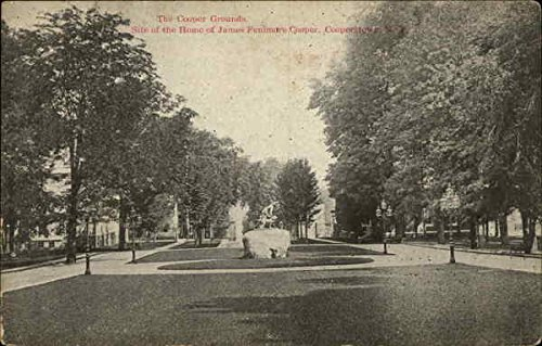Cooper Ground (The Cooper Grounds Cooperstown, New York Original Vintage Postcard)