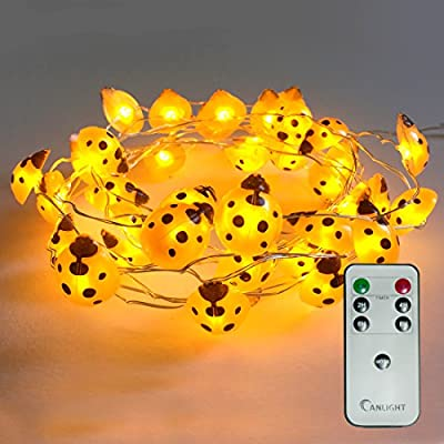 Halloween String Lights, 10ft 40LEDs Long Battery Operated Copper Wire With the Remote & Timer for Indoor/Covered Outdoor/Autumn Parties & Home/Dorm Room Decorations