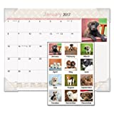AT-A-GLANCE Puppies Monthly Desk Calendar 2015, 22 x 17 Inch Page Size (DMD166-32)
