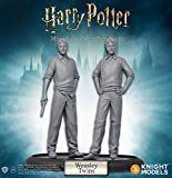 Knight Models HPMAG07 Harry Potter Miniatures Adventure Game: Fred and George Weasley Expansion Pack, Mixed Colours
