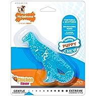 Nylabone Puppy Chew Dinosaur Dental Chew Toy for Teething Puppies