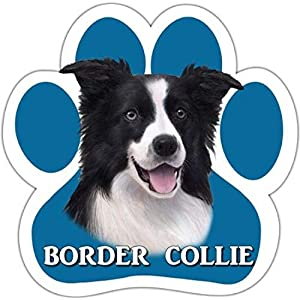Border Collie Car Magnet With Unique Paw Shaped Design Measures 5.2 by 5.2 Inches Covered In UV Gloss For Weather Protection 22