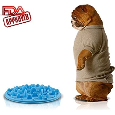 Slow Feed Dog Bowl - FDA Approved Bloat Remedy will Guarantee Slower Feeding time - Great for Cats (Blue, Small)