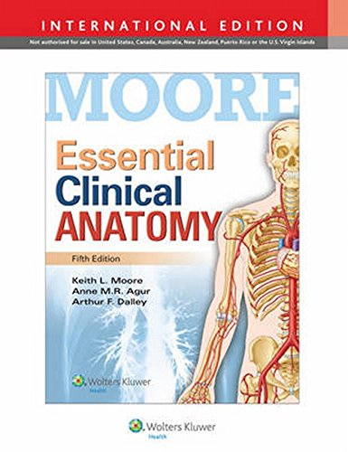 Essential Clinical Anatomy: Amazon.co.uk: Keith L. Moore, Anne M. R. ...