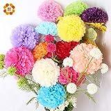 HATABO Artificial Heads Flower Head Flower 6'' 8'' 10''(15cm 20cm 25cm) 30pcs Tissue Paper Pom Poms Wedding Party Decor Paper Flower for Garden Supplies/Wedding Decoration (Random)