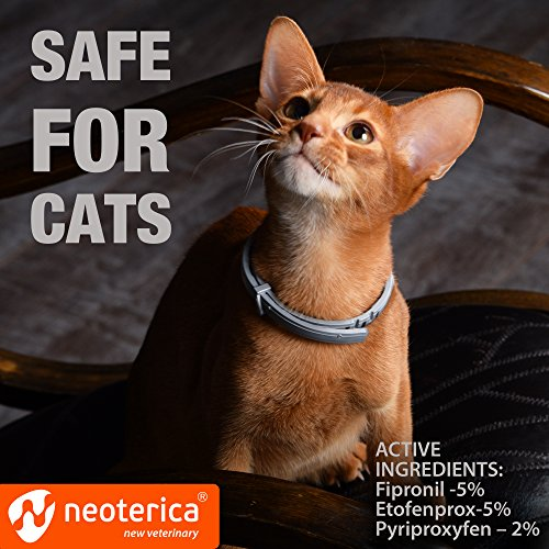 Rolf Collar Cats - Flea and Prevention Flea Control for 8 - Safe Waterproof