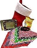 Dog Lover Christmas Stocking With 6 Medium Dog Seasonal Bandanas, Picture Tin, Treats - Christmas Holiday Birthday Gifrt
