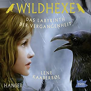 Das Labyrinth der Vergangenheit (Wildhexe 5) Hörbuch