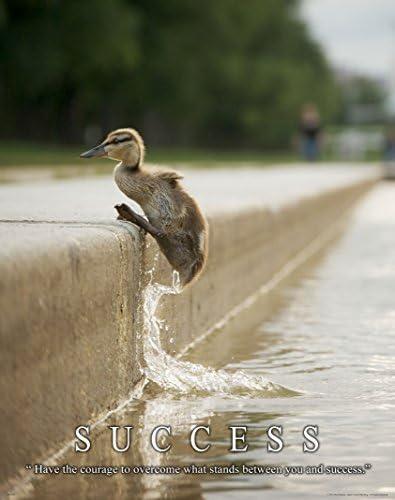 Duck Motivational Poster Art Print Unlimited Teacher Classroom Success  MVP413