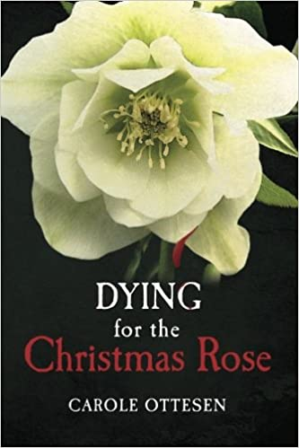 About Christmas and Lenten Rose