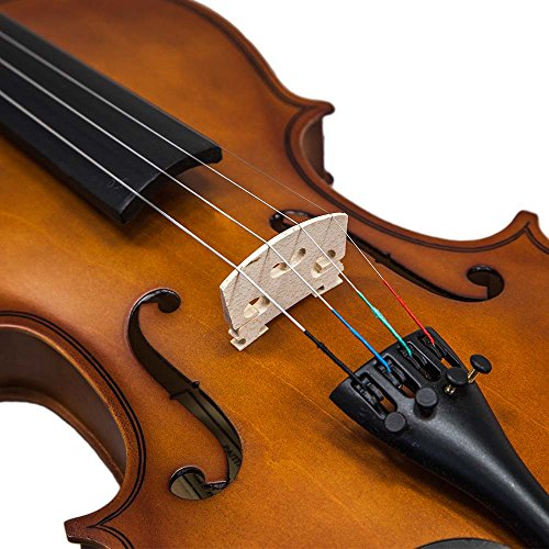SKY 4/4 Full Size SKYVN102 Solid Wood Violin with Lightweight Case