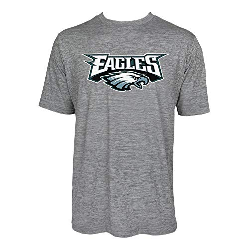 (NFL Philadelphia Eagles Men's Tonal Gray Wordmark Logo Tee, Gray, X-Large)